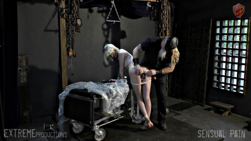 BDSM Abigail Dupree Anal After The Exam