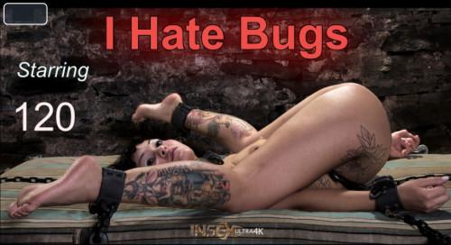 BDSM IoD - I Hate Bugs (2019)