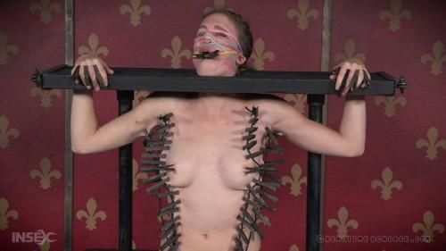 BDSM Insatiable Ass Part 1 - Ashley Lane