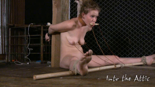 BDSM Wonderfull Sweet Vip Magic Mega Collection Of Into The Attic. Part 10.