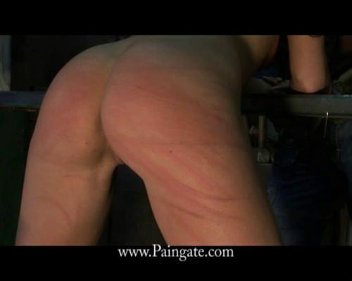 BDSM Sydneys Assignment