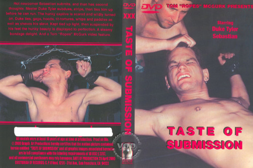 Gay BDSM Taste of Submission