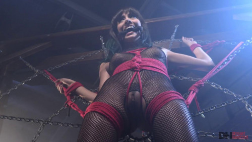BDSM Begging Bill to sick his cock
