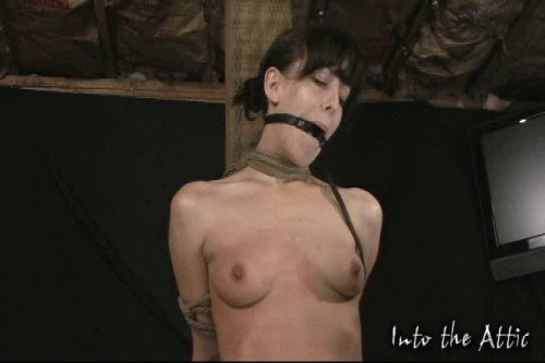 BDSM Real Amateur Submission and Torture part 3