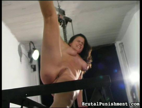 BDSM Whips and Welts