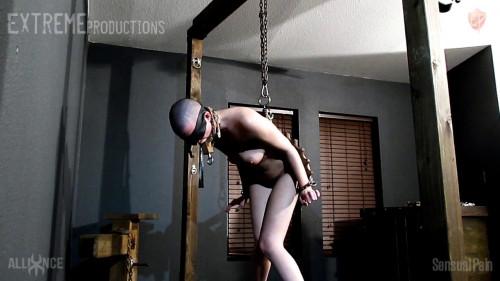 BDSM Cultipacker Ass Whipping - Abigail Dupree - HD 720p