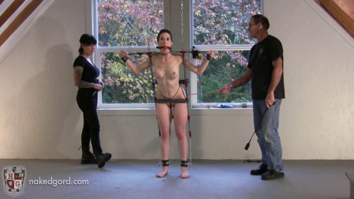 BDSM Trinty in Trouble - Part 2