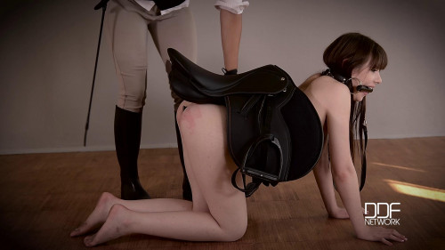 BDSM A Petite Teen's Anal Insertion Experience