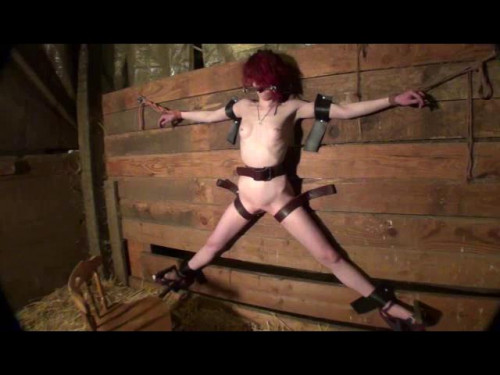 bdsm Natashas Days in the Barn 2 Part Two
