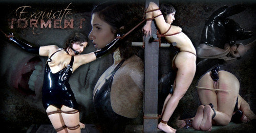bdsm Exquisite Torment