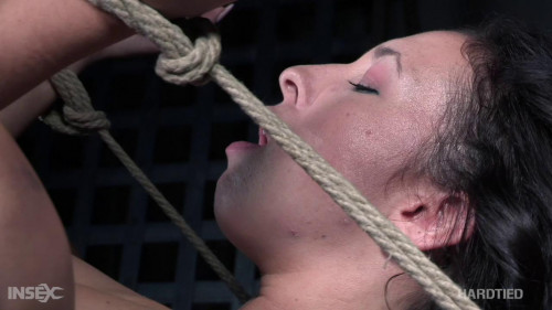 BDSM Ohh My