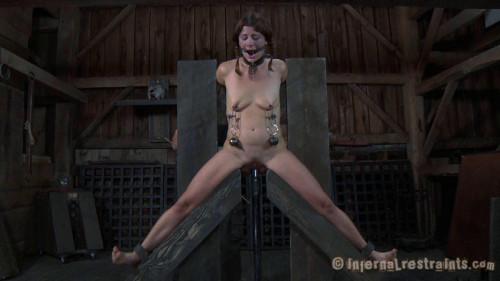 BDSM Validation