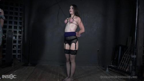 BDSM Blind Hole Part 2 - Anastasia Rose