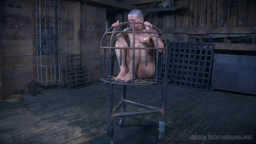BDSM The Extended Feed of Miss Dupree Hot Cool Vip Sweet Collection. Part 1.