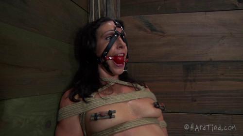 BDSM HD Bdsm Sex Videos Sweat