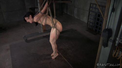 BDSM HardTied Elise Graves  and  Jack Hammer