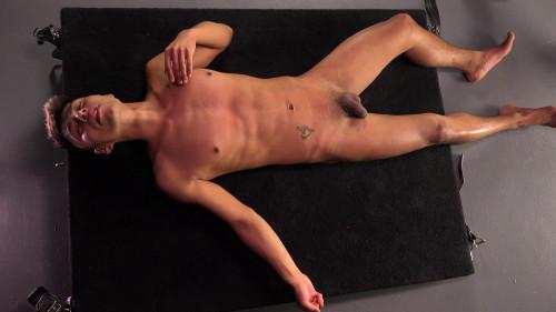 Gay BDSM Hot German Meat vol.4
