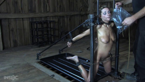 bdsm Humiliation Slut