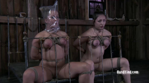 BDSM Two Rotten Cunts ( Dee and Dia Zerva)