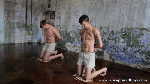 Gay BDSM Slaves Competition - Part II