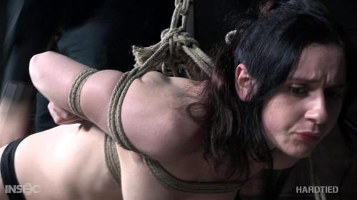 BDSM Bend or Break
