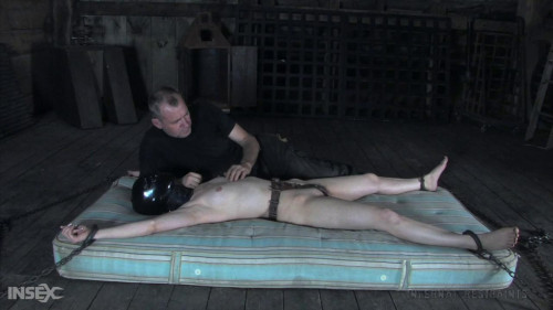 BDSM Calico Between A Barrel And A Hard Place
