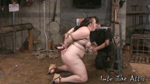 BDSM Into The Attic - Morgan Lefay