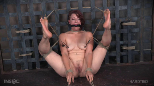 bdsm Predicament