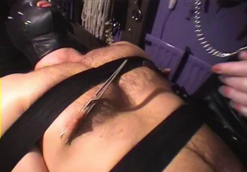 Femdom and Strapon 3 Way Electrics
