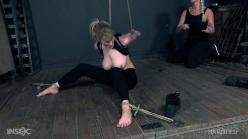BDSM The Agents Part 2
