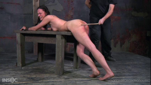 BDSM The Submission of 314 Part Three