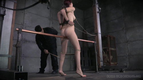 BDSM Cunt Puppy Part 2