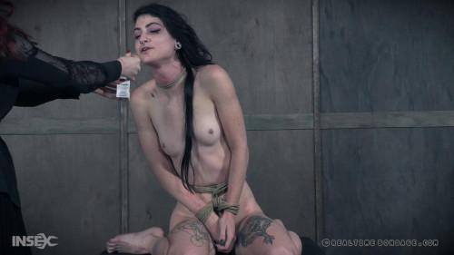 BDSM Thats a Wrap Part 3 , Lydia Black