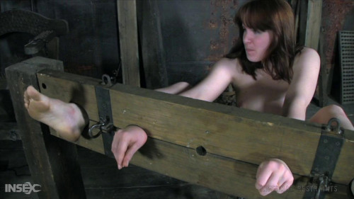 BDSM The prosecutor part 2