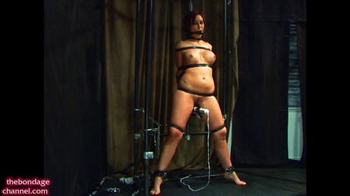 BDSM Drool Sweat and Cum
