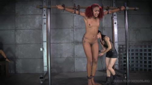 BDSM Franken-Pussy Part 3