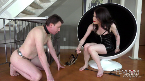 Femdom and Strapon Horny Foot Addict