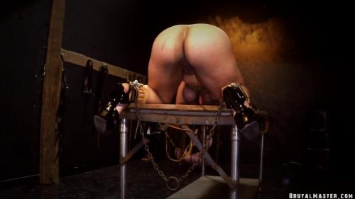 BDSM Pussy