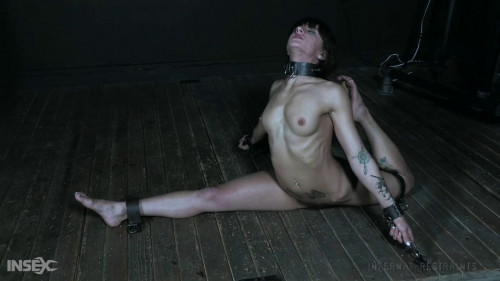 BDSM InfernalRestraints - Wrong House: Pretzel - Dakota Marr