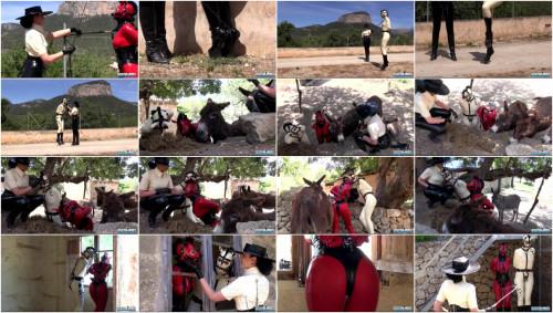 BDSM Latex Rubber Pony Finca