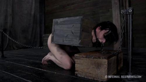 BDSM Queen of Pain Pt 2 - Elise Graves