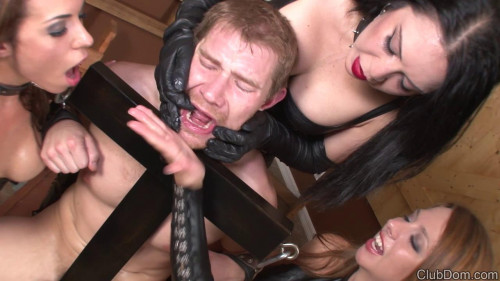 Femdom and Strapon Trap For Genital - CD