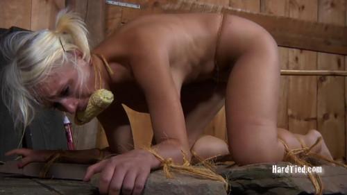BDSM Corn Cob Cunt - Sophie Ryan, Master A