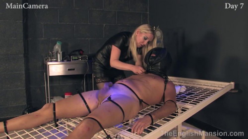 Femdom and Strapon Slavery - Day 6 and 7