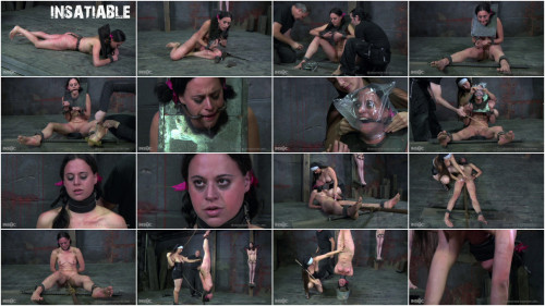 BDSM Insatiable Part Two