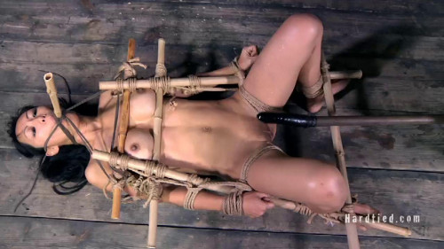 BDSM HardTied 2010
