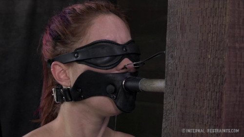 BDSM IR - Calico Lane, Cyd Black - For Bondage's Sake Part Two
