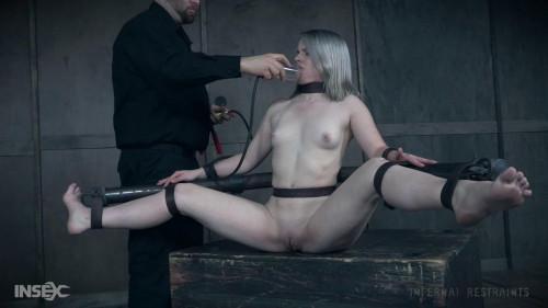 BDSM Bambi Belle Chrysalis (2017)