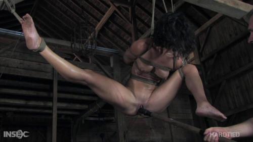 BDSM HardTied - Wenona - Tickled