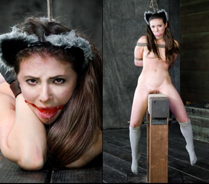 bdsm In Heat - Casey Calvert